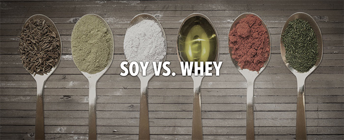 Soy vs Whey – Bodybuilding.com gives their input